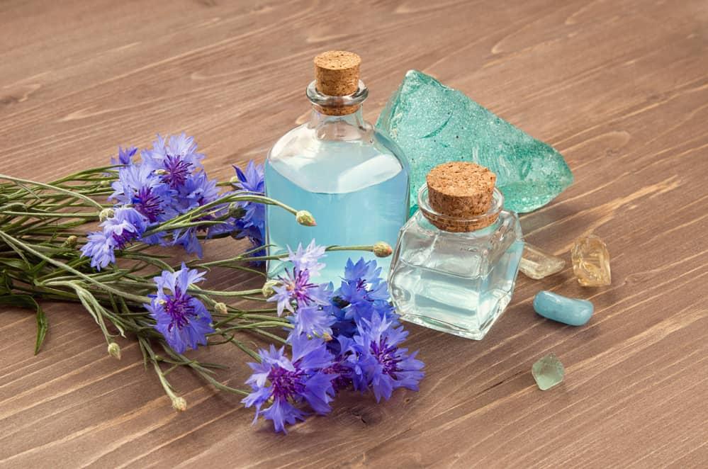 bienfaits-eau-florale-bleuet-hydrolat